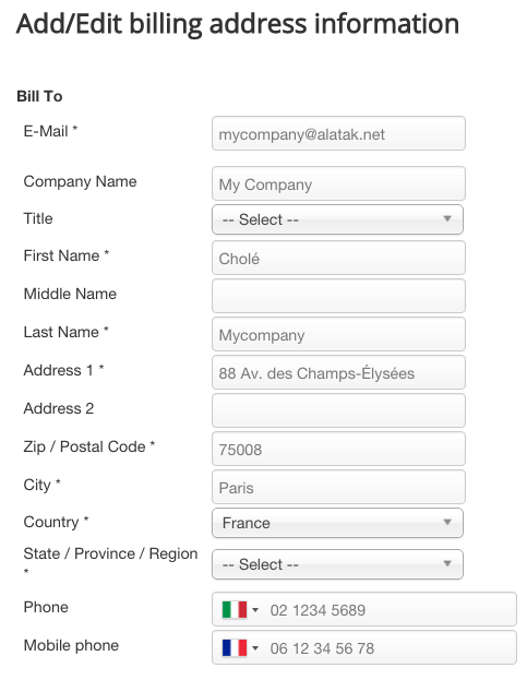 Phone validator in the Bill To address
